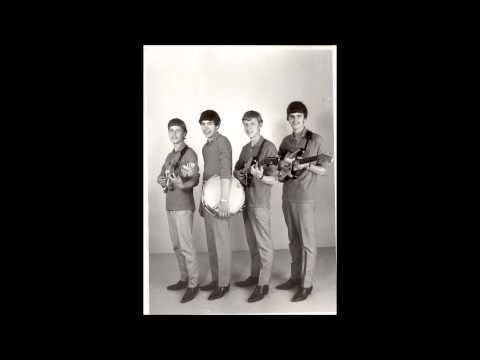 The Flippers 1966  The Game of love