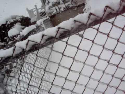 Snow 2009 Vanderlei Moreira