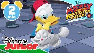 Mickey And The Roadster Racers | Surprise! It's Jinx ? | Disney Junior UK