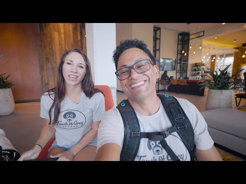 Touch of Grey   Caring For Senior Dogs   Dog Rescue Vlog