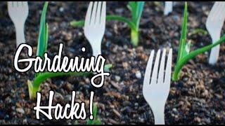 10: Gardening Hacks