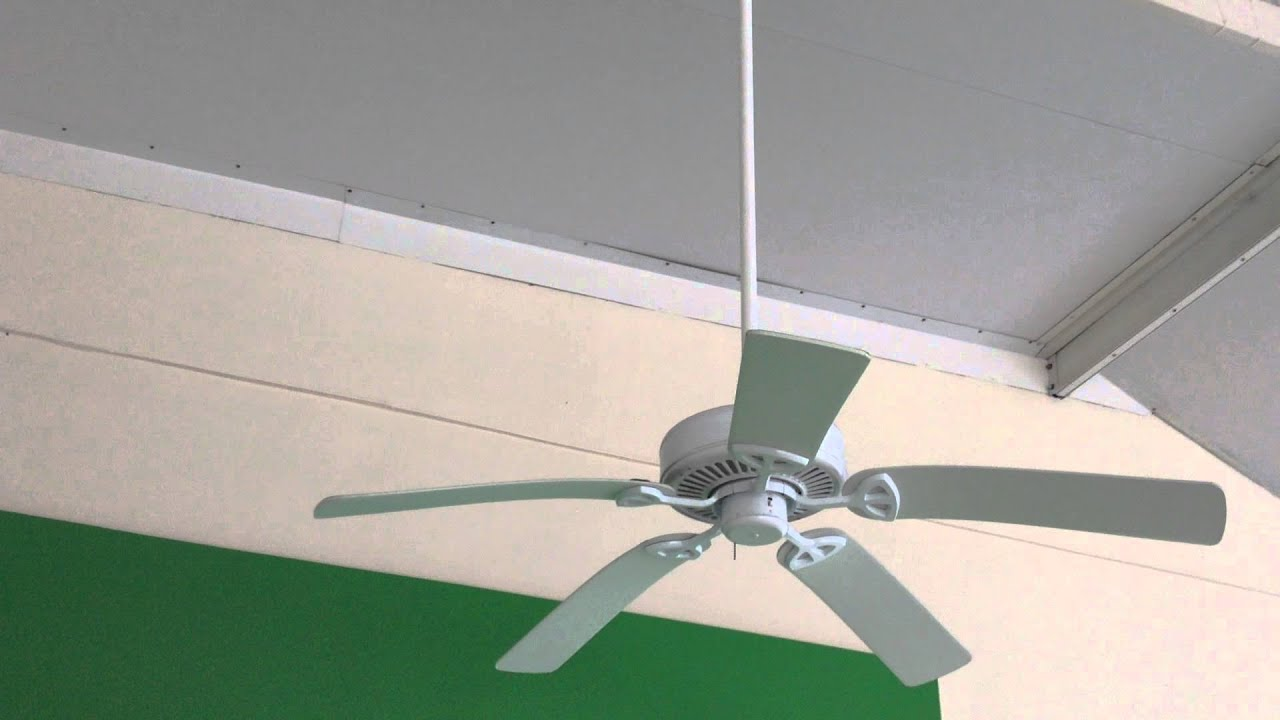 "52"" Hampton Bay Farmington Ceiling fans"