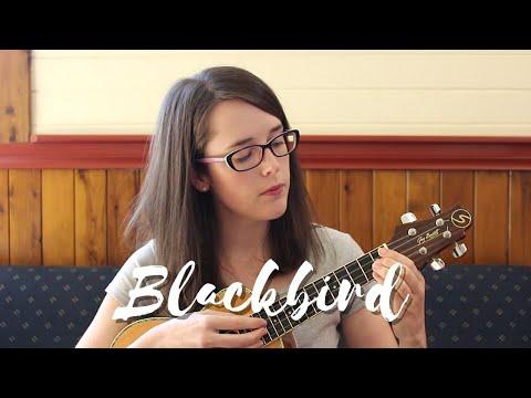 Blackbird - The Beatles (Ukulele Cover)