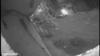 بالفيديو.. مجهول يشعل النار فى مسجد بدمنهور قرب مبني محافظة البحيرة