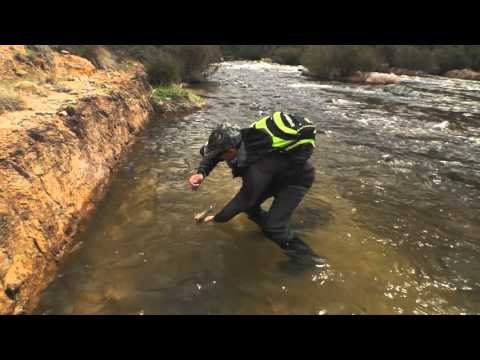 Trout In Flowing Waters - Fishing - BCF