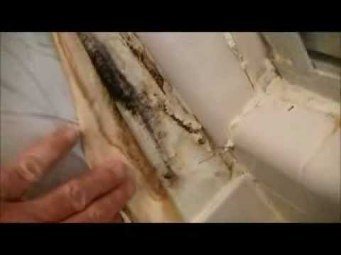 Sanded Vs Unsanded Grout Caulk