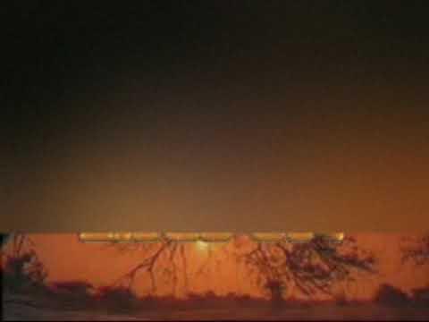 Zapin (Lampung)