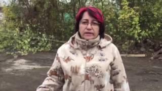 Приют «Верный» ответил на вопросы подписчиков о пожаре и будущем питомцев
