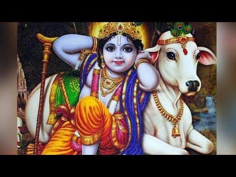janmashtami-status-2020- -happy-janmashtami- -krishna-status-song- -janmashtami-whatsapp-status