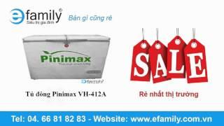 Tủ đông Pinimax VH-412A