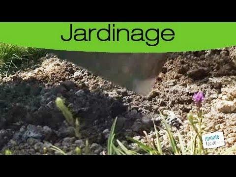 Astuces jardinage utiliser les cendres de bois dans son for Cendre de bois au jardin