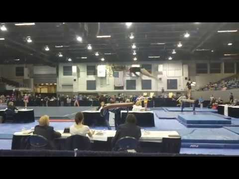 Madison Steskal | 2018 Region 5 Level 9 Meet - VT 9.500 1st