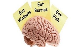 Top 5 Foods For Your Brain
