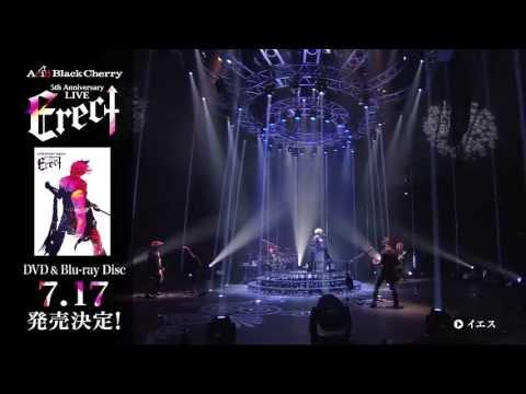 Acid Black Cherry / LIVE DVD 「Acid Black Cherry 5th Anniversary Live 「Erect」」ダイジェスト