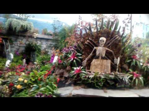 Sonoma County Fair Hall of Flowers 2016 (Classic cinema tribute)