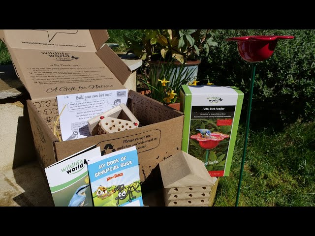 Unboxing a Wildlife World Kids' Explorer Kit