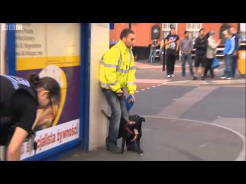 Traffic Cops - Attacked in Luton