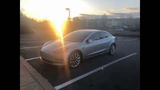 Tesla Model 3 Pick up!