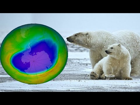 Ozone Depletion vs. Information & Facts