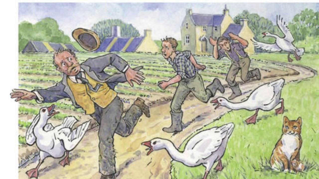 Animal farm essays