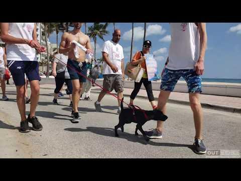 Florida AIDS Walk and Music Festival 2018 Featuring Flo-Rida!