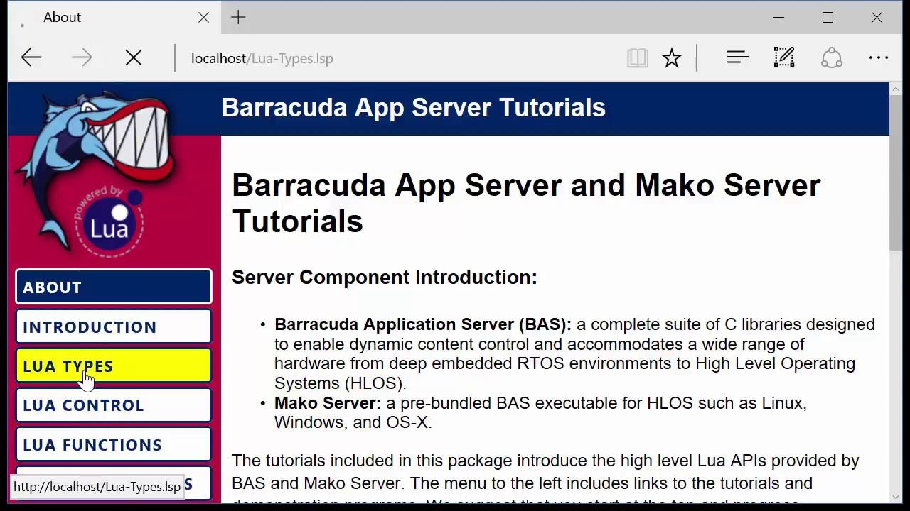 Embedded Web Server