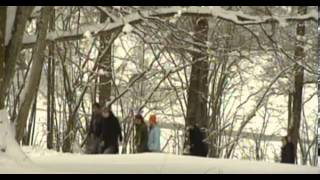 Lawinen: Tödliche Schneemassen im Gebirge