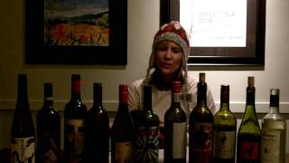 Twin Cities Wine Sommelier & Wine Dachshund Survive Mn's Snow-pocalypse With Whacked Wine!
