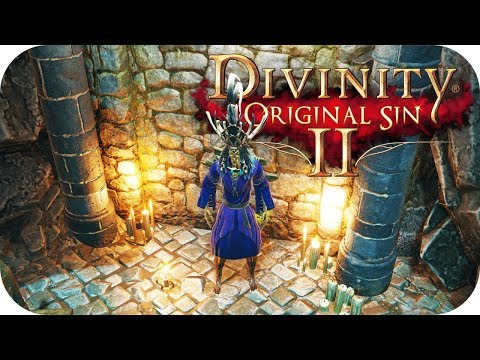 Hidden Friends – Divinity Original Sin 2 Co-op Gameplay – Let's Play Part 3
