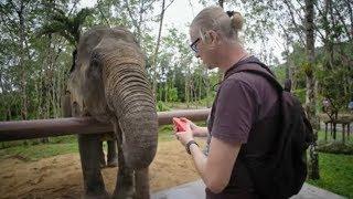 To sanktuarium słoni w Tajlandii jest naprawdę wyjątkowe! [Jestem z Polski]