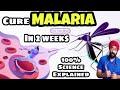 MALARIA : Full Information Explained in Hindi | मलेरिया माँ से बच्चे हो हो सकता है | Dr.Education