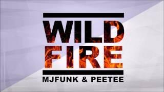 MJFuNk & PeeTee - Wildfire (Original Mix)