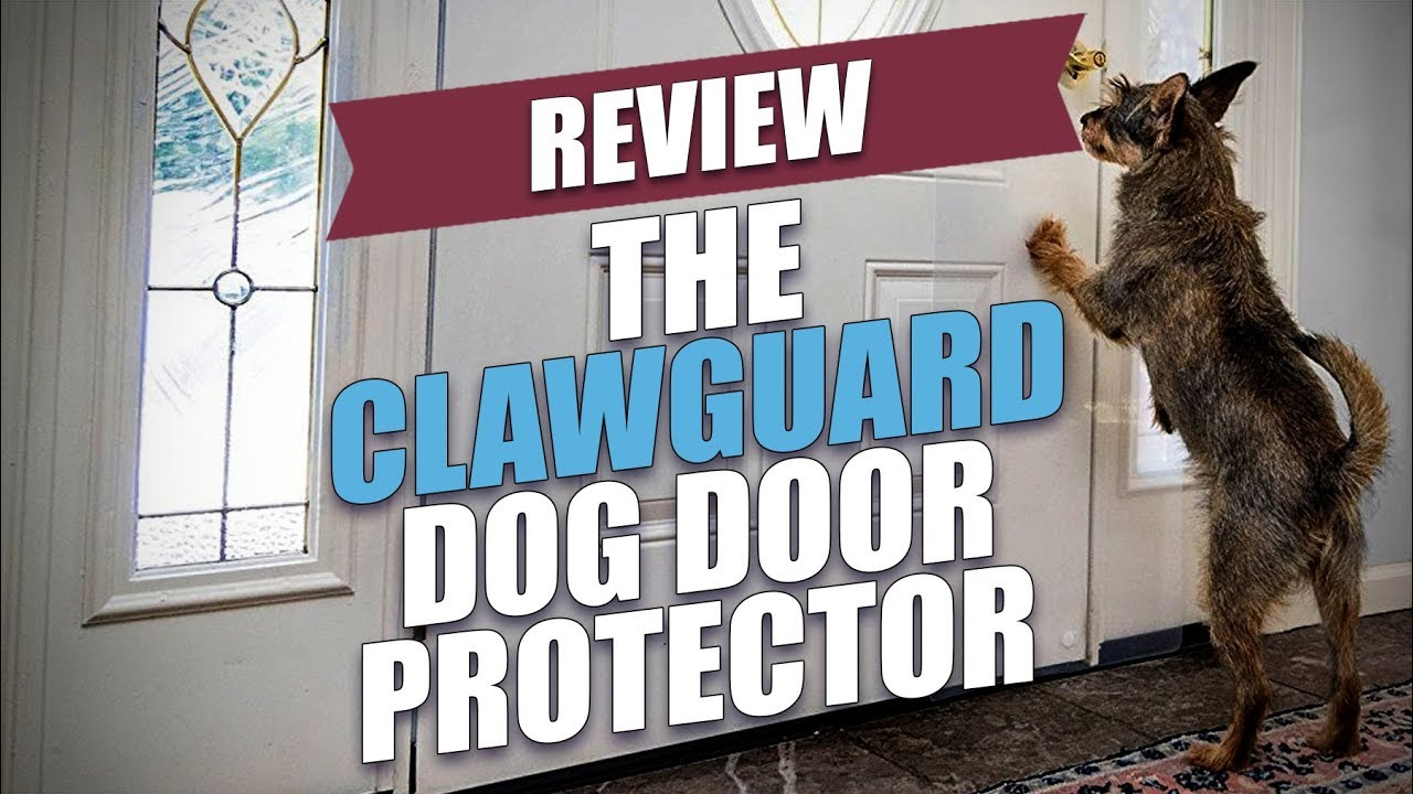 The Clawguard Door Protector Review 2018 Youtube