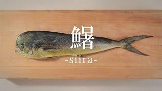 鱪(しいら)のさばき方 - How to filet Common Dolphinfish -|日本さばけるプロジェクト