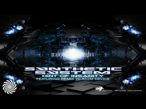 Synthetic System - Hint of Insanity