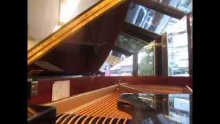 你甘會想阮 ( 原唱 江蕙 )   Piano Cover 1: Vera Lee