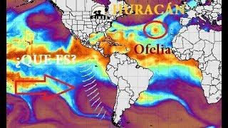 Huracán Ofelia | Origen de los Huracanes | Ondas provocan Huracanes | Katia - José - María