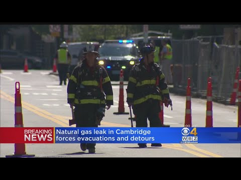 5,000 Evacuated After