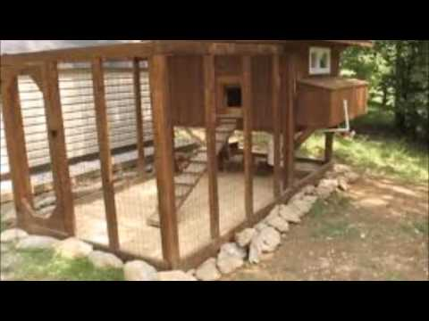 Building A Poultry House In Nigeria - How To Build A Green Roof Chicken Coop