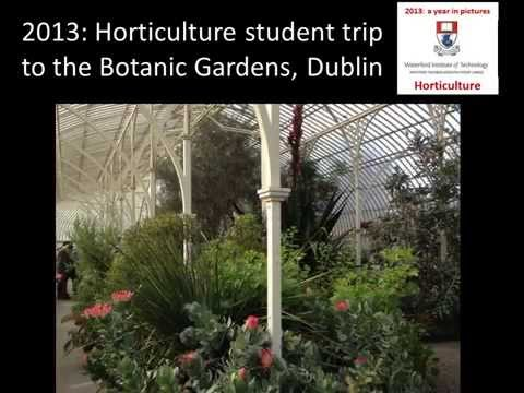Waterford Institute of Technology Level 7, BSc. in Horticulture. 2013: A Year In Pictures