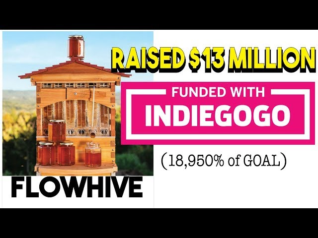How to Dominate Your Next Crowdfunding Campaign | Indiegogo