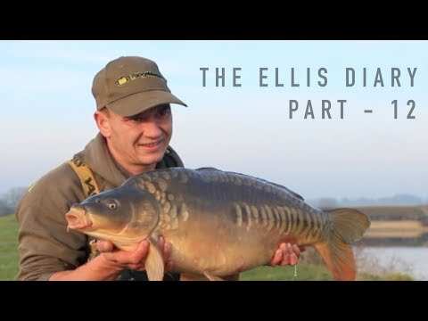 THE ELLIS DIARY - WINTER CARP FISHING ACTION AND A DEATH ON THE NOTORIOUS PIT!