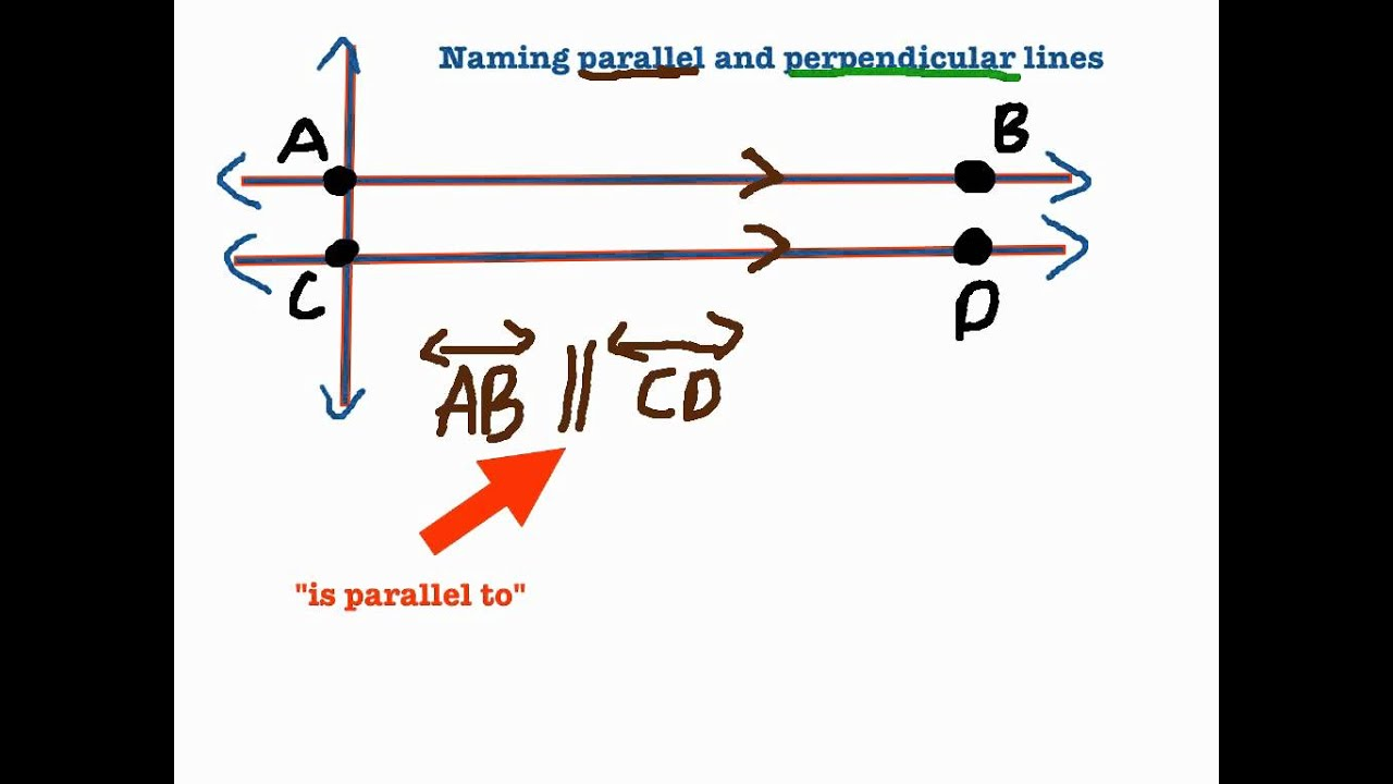 worksheet Perpendicular Lines naming parallel and perpendicular lines youtube lines