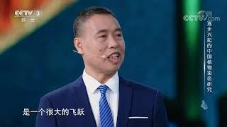 [衣尚中国]逐步兴起的中国植物染色研究| CCTV综艺 - YouTube