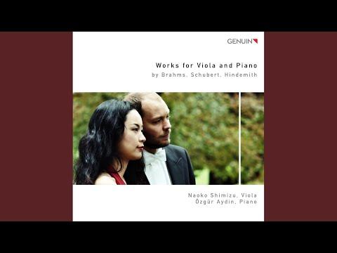 Arpeggione Sonata in A Minor, D. 821 (arr. for viola and piano) : I. Allegro moderato