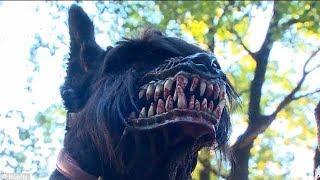 Die 10 Gefährlichsten Hunderassen der Welt