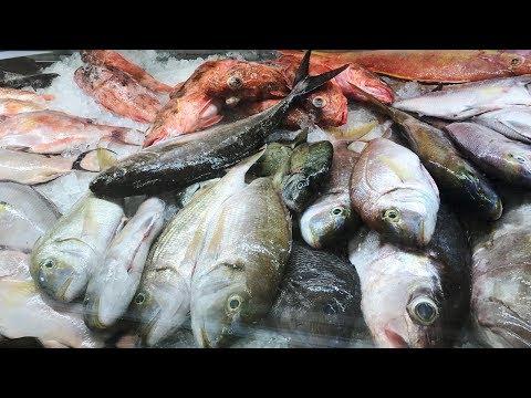 Making It Grow - Harrelson's Seafood Market
