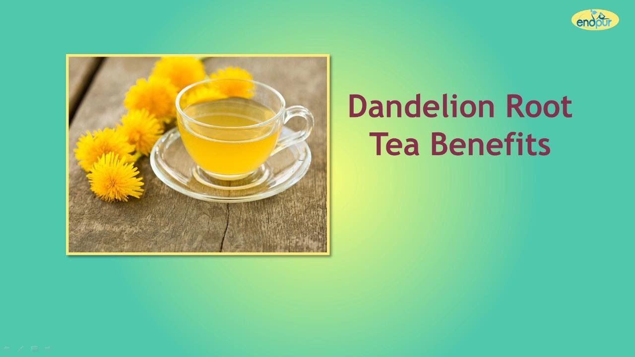 how to make dandelion root tea for cancer