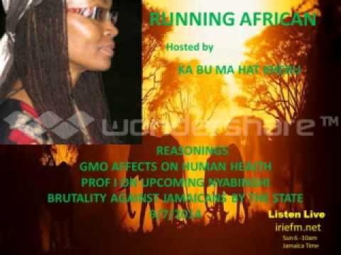 Running African(Health effects of GMO)