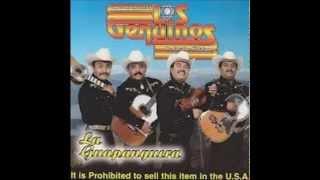 Trio Los Genuinos de Jacala Hidalgo Mi Diccionario